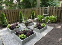 25+ best ideas about No grass backyard on Pinterest   No ...