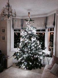 Christmas tree in bay window | new house | Pinterest ...