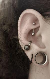 Ear Gauges | best 25 small ear gauges ideas on pinterest ...