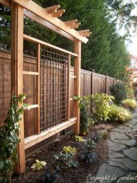 Grape Arbor Designs Plans - WoodWorking Projects & Plans
