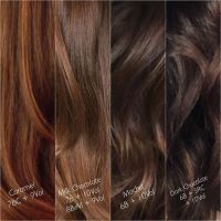 17 Best ideas about Chocolate Brown Hair on Pinterest ...