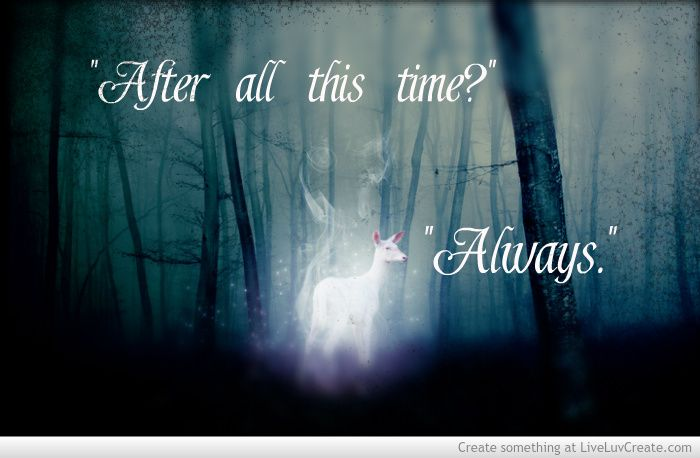 Albus Quote Harry Potter Wallpaper Hd After All This Time Quot Always J K Rowling Fiction