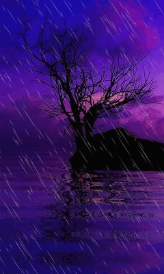 Snow Falling Gif Wallpaper Download Animated 240x400 171 Tree In Rain 187 Cell Phone