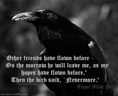 Book Quote Wallpaper Edgar Allan Poe 17 Best Images About Quot Quote The Raven Never More