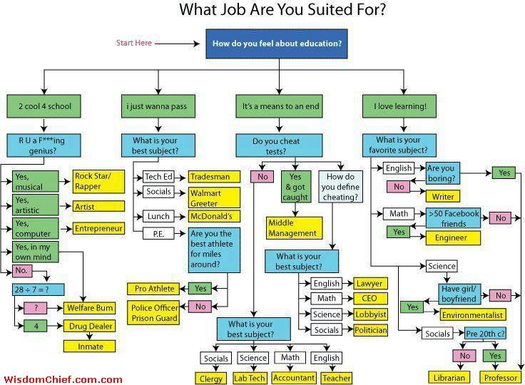 Best Accounting Career Path 7 Cool Career Paths In Accounting The Muse For What Job Are You Suited For Flow Chart Quiz Lol