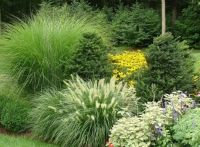 68 best images about Landscaping ideas on Pinterest ...