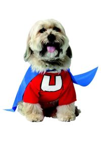 1214 Best images about Costumes - Dogs on Pinterest ...