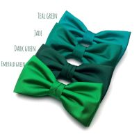 1000+ ideas about Bow Tie Groom on Pinterest | Groomsmen ...