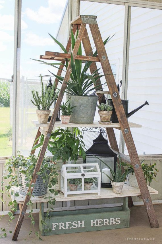 1000 Ideas About Old Ladder Decor On Pinterest Old