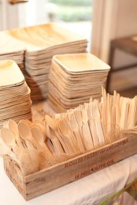 Eco friendly palm leaf plates and wooden cutlery. Photo By