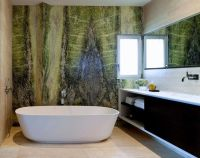 25+ best ideas about Green accent walls on Pinterest
