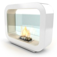 54 best images about bio ethanol fireplace on Pinterest ...