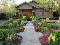 Best 25+ No grass yard ideas on Pinterest