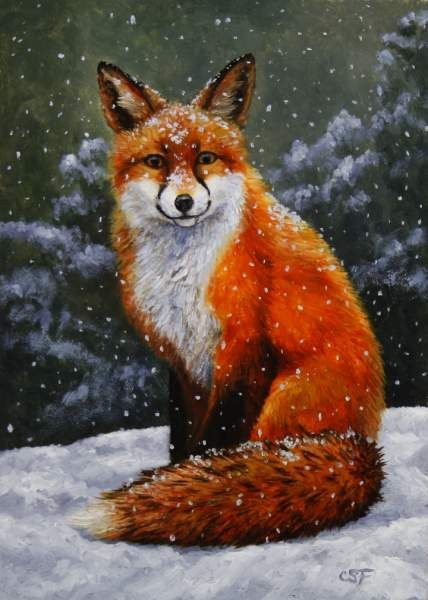 Christmas Falling Snow Wallpaper Note 3 Red Animals Google Search Red Pinterest Search