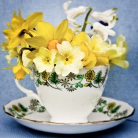 354 best images about Flowers in a Teacups on Pinterest ...