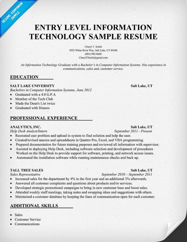 entry level information technology resume examples