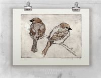 17 Best ideas about Sparrow Drawing on Pinterest