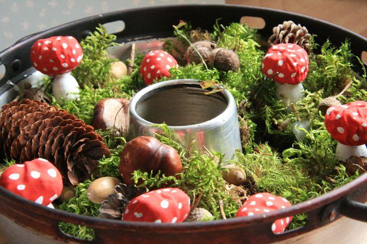 Kuchenwand Grun ~ Inneneinrichtung und Möbel - kuchenwand grun