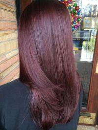 Mahogany Violet Hair Color | www.pixshark.com - Images ...