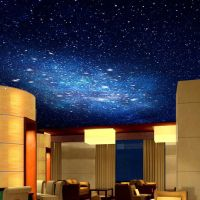 3D Star Nebula Night Sky Large Suspended Ceiling Painted ...