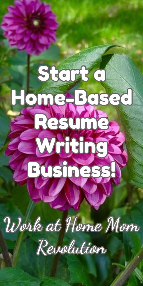 Start A Resume Writing Business Free Essay Writing Help Online In A Town  This Size Home