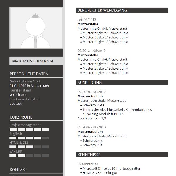 Free Creative Professional Photoshop Cv Template 52 Best Images About Lebenslauf Muster And Vorlagen On