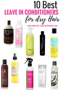 25+ Best Ideas about Dry Hair on Pinterest | Dry hair ...