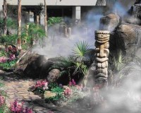 17 Best images about Ideas for Hawaiian Landscaping on ...