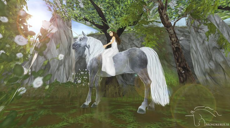 Cute Horse Wallpapers Starstable Gimp Anm 228 L 9 Bra Inl 228 Gg Star Stable