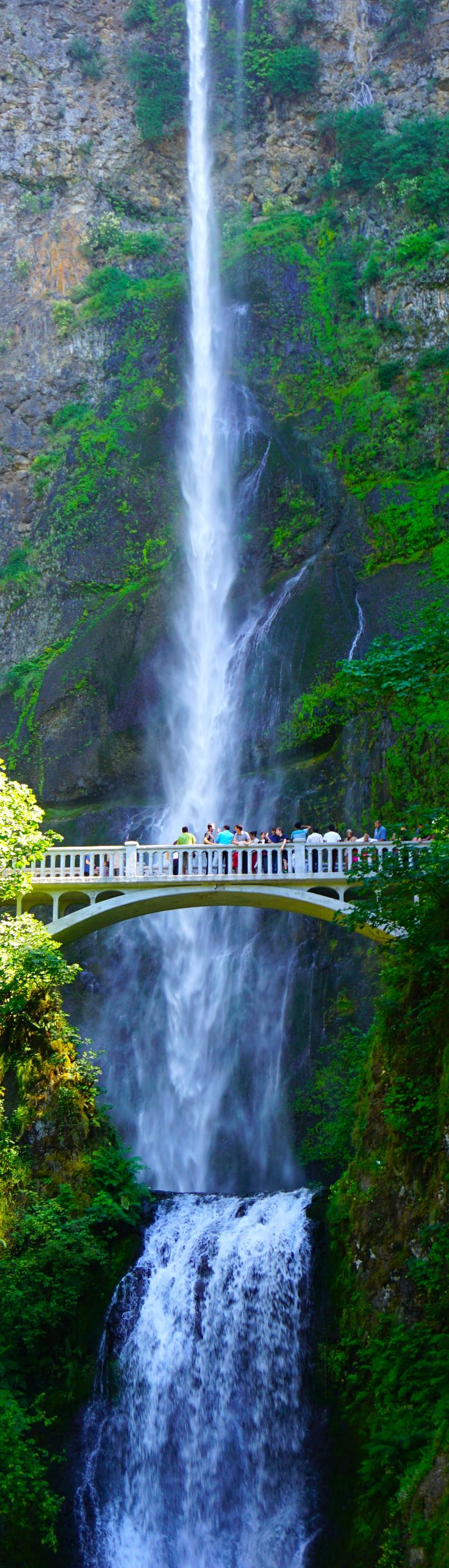 Multnomah Falls...one of the beautiful sites close to Portland, OR. Zach and I fell in love with it the first time we saw it 49 years ago. http://item.taobao.com/item.htm?spm=a1z10.1.w4004-8319415327.2.iDs82C&id=39797003386: