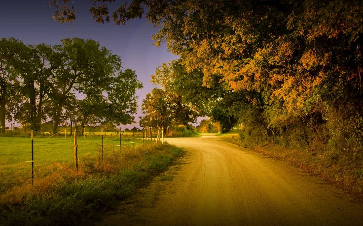 Cute Faith Wallpapers Old Country Roads Road Trees Wallpapers Dirt Road Trees