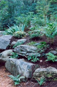 Best 25+ Rockery garden ideas on Pinterest
