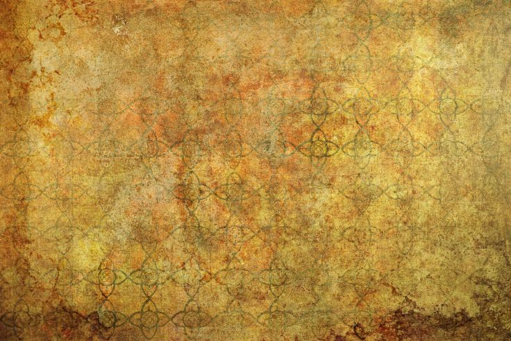 Birch Tree Fall Wallpaper Texture Investigation A Cool Celtic Background Web
