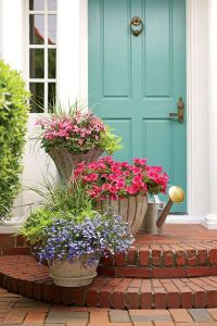 493 best images about Front Door Planters on Pinterest ...
