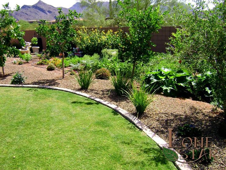 Fruit trees with a vegetable garden below in Scottsdale