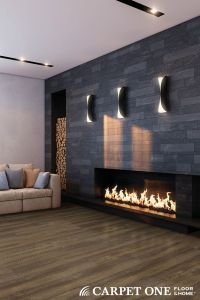 1000+ ideas about Modern Fireplace Decor on Pinterest ...