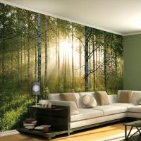 17 Best images about Living Room Murals on Pinterest ...