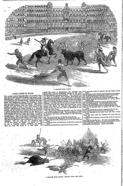 17 Best images about Year 1861 on Pinterest   Plymouth, Cattle and The black