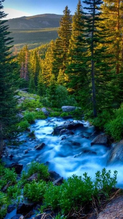 iphone-5-wallpapers-hd-2818-gjdho.jpg (640×1136) | Nature Wallpaper | Pinterest | Beautiful ...