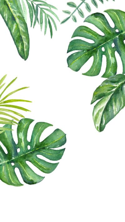 25+ best ideas about Leaves Wallpaper on Pinterest | Palm wallpaper, Tropical entry products and ...