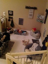 1000 Ideas About Dog Bedroom On Pinterest