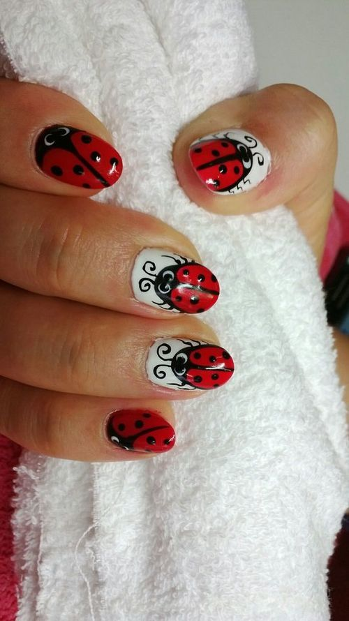 Best 25+ Ladybug nails ideas only on Pinterest