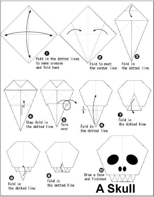 diagrams of pumpkin to print