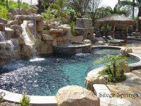 backyard pool...pure luxury! Slide, hot tub, fire place ...