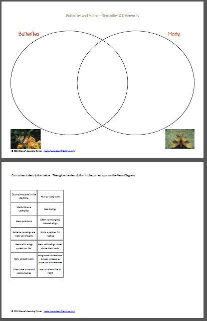 common core diagram