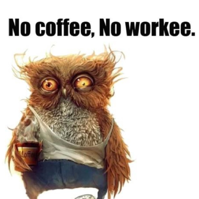Cute Owl Wallpaper With Quotes No Coffee No Workee Fun At Work Pinterest Coffee
