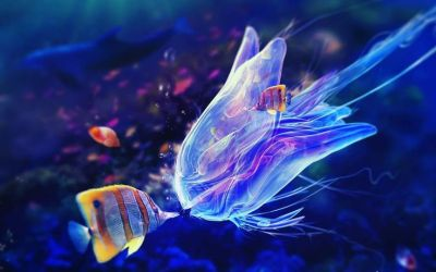 17 Best images about 3D & 5D Wallpapers on Pinterest | iPhone wallpapers, Digital art and Gold ...