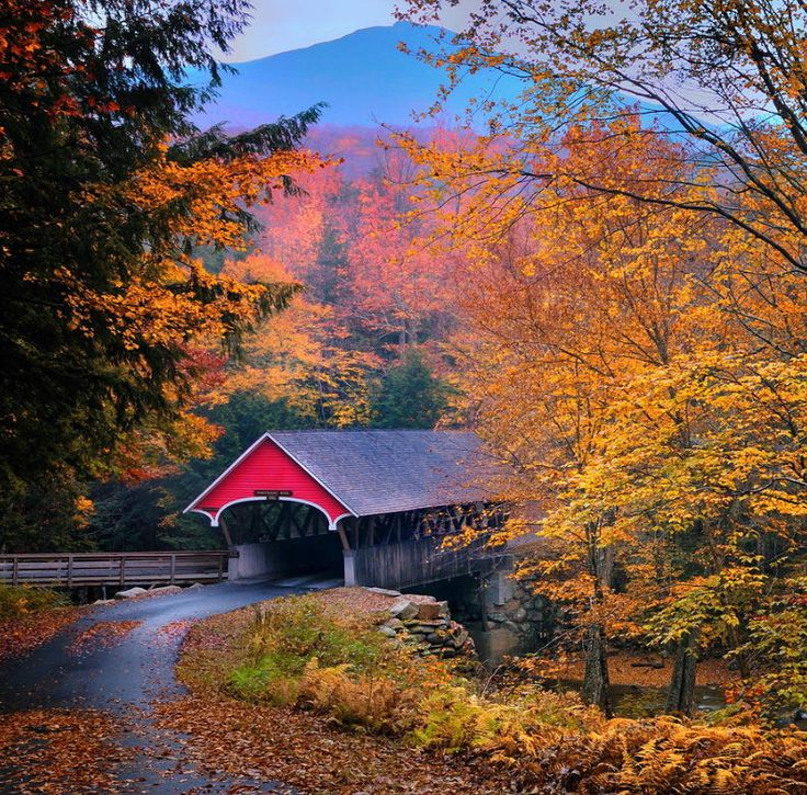 New England Fall Foliage Wallpaper Essence Of New England Found Many Of These Covered