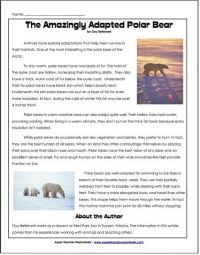 Animal Adaptation Plans: a collection of ideas to try ...
