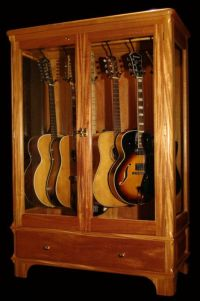 Vintage Guitar Display Case